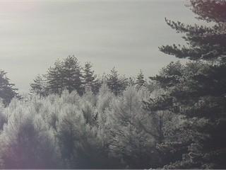 130106_1.jpg
