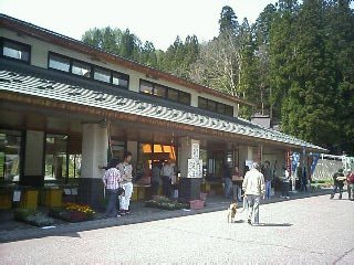2007-05-03_09-390001.jpg